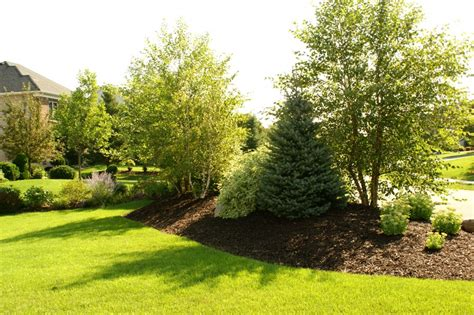berm landscaping pictures 1000 images about berm and mound landscaping on pinterest