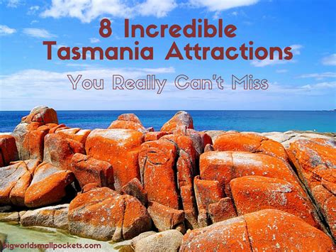 8 Incredible Tasmania Attractions You Can't Miss - Big ...