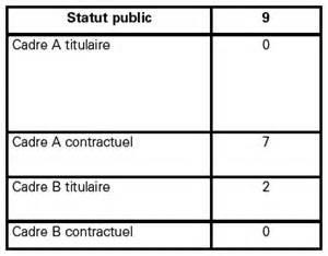 statut cadre niveau 7 les cadres de l animation sont ils des cadres comme les