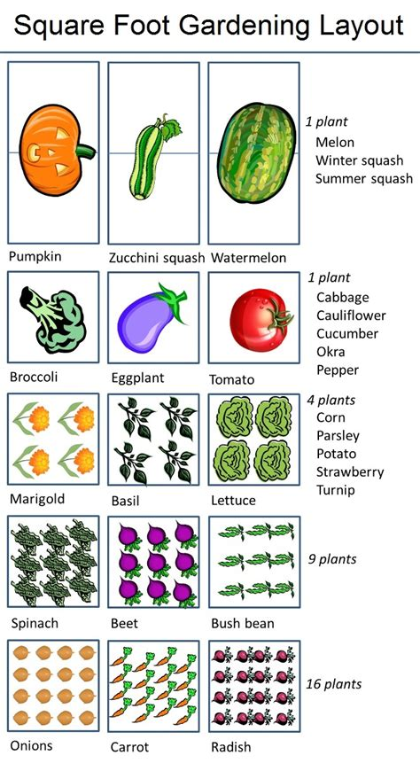 1000 ideas about garden layouts on square