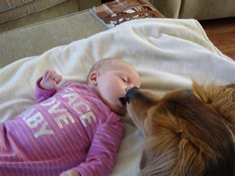 Thrash Cradle Cap And Baby Acne Thepalmfamily
