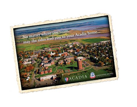acadia alumni summer reunion acadia university