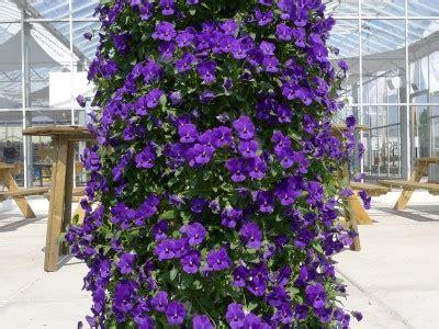 Edible Vertical Garden by Vertical Garden