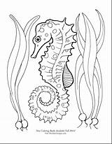Seahorse Coloring Pages Seahorses Drawing Sea Horse Printable Draw Adult Google Theinkyoctopus Getdrawings Starfish Tattoo sketch template