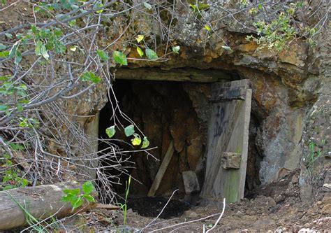 bat habitat by cameradiva photo weather underground