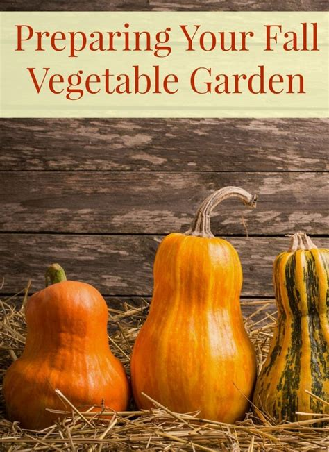 Gardening Tips To Help You Prepare Your Fall Vegetable