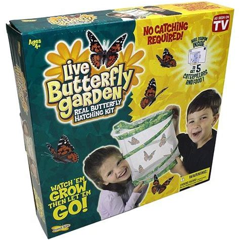 butterfly garden kit original butterfly garden kit with voucher by xump