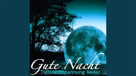 Traumhafte Gute Nacht Musik