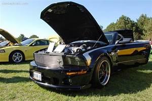 2005 Roush Sport Mustang GT - conceptcarz.com