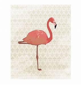 les 36 meilleures images du tableau chloe sur pinterest With photo de jardin exotique 14 des flamants roses dans la deco joli place