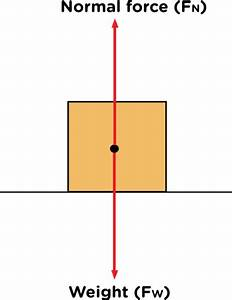 What Are Two Ways All External Force On An Object Are