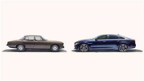 big cat diaries  celebrate  years   jaguar xj