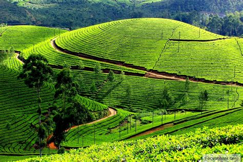 coimbatore hill station of tamil ooty city the crown of hill station india india luxury