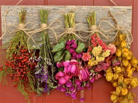 Dry Flowers Decoration For Home: Flower Drying RackDried Flower ArrangementWall DecorDried
