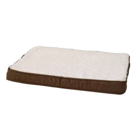 alphapooch lounger orthopedic coco dog bed petco