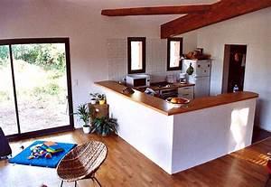 davausnet decoration cuisine americaine salon avec With attractive plan de maison moderne 10 deco salon et cuisine ouverte