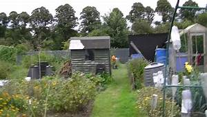Building Our Allotment Shed