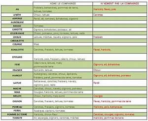 Plantes Amies Et Ennemies Au Potager : association des cultures et plantes plantes semences ~ Melissatoandfro.com Idées de Décoration