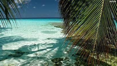 Tropical Desktop Backgrounds Beach Wallpapers Adorable Xiaomi