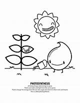 Coloring Photosynthesis Energy Solar Record Drawing Brooklyn Bridge Sheets System Printable Getcolorings Need Pdf Getdrawings Colorings sketch template