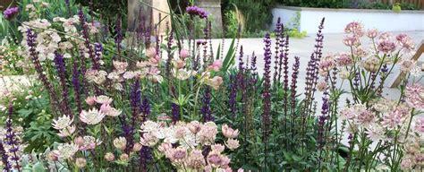 cottage garden planting scheme claire moreno garden design and planting in kent