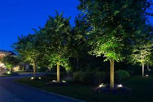remarkable design low voltage landscaping lights amazing With outdoor lighting companies in nj