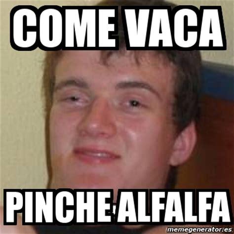 Alfalfa Meme - meme personalizado come vaca pinche alfalfa 562522