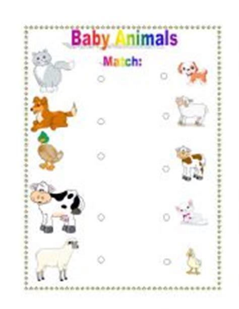 baby animals names worksheet teaching worksheets baby animals
