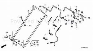 Honda Hrx217 Parts Diagram  U2014 Untpikapps
