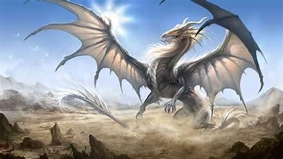 Fantasy Dragon 1372