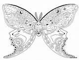 Coloring Moth Luna Mandalas Mandala sketch template