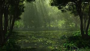 Swamp Background ·①