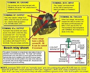 06 Tiger - Twin Headlamp Relay Question - Page 5