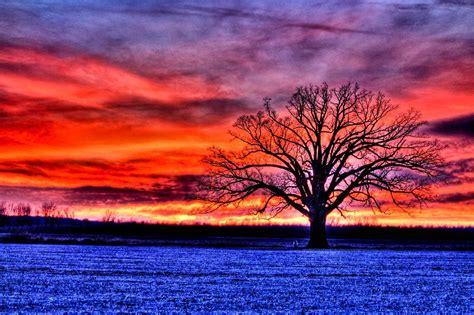 hdrs   big  tree cc  talley lighting