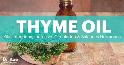thyme oil  rid  infections balances hormones dr axe
