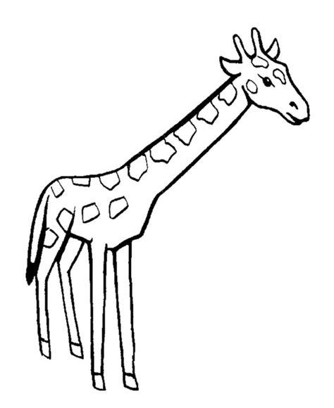 easy  color giraffe giraffe coloring page gifties