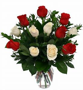 One Dozen Red and White Roses · Roses · Canada Flowers