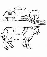 Cow Coloring Cute Animal Pages Drawing Books Printable Print Farm Animals Milk sketch template