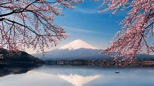 Mount Fuji At Spring HD Wallpaper Wallpaper Studio 10