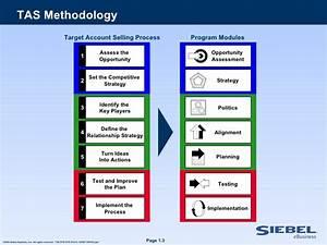 metodologia tas para empresas it With target account selling template