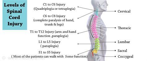 Causes, Symptoms, Diagnosis