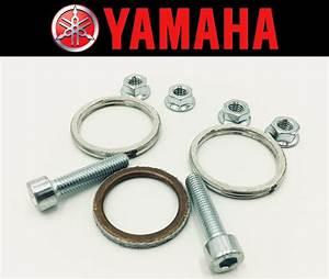 Exhaust Manifold Gasket Repair Set Yamaha Xvs650 V