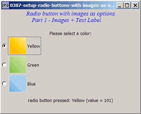 387 how to setup radio buttons with images as options part 1 sle codes