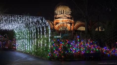 cincinnati zoo festival of lights pnc festival of lights the cincinnati zoo botanical garden