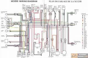 Yamaha Cygnus X Wiring Diagram