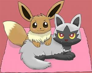 Eevee and Poochyena by pichu90 on DeviantArt