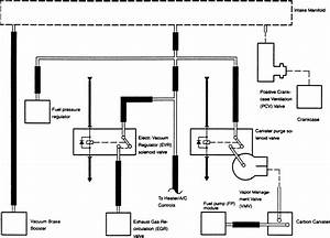 Full 3 0l Vacuum Diagram W  O Egr