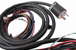 Automotive Wire Harnesses