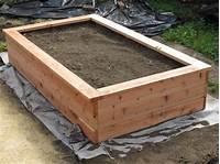 build a planter box Building a planter box and planting fruits and veggies ...