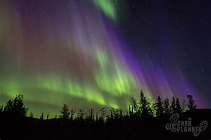 Northern Lights And Chena Springs Tour From Fairbanks Chena Springs Resort Fairbanks Alaska The Trek Planner
